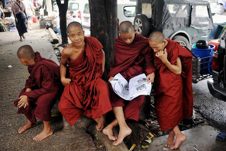 Places | Burma | Monks reading the newspaper |  01112291